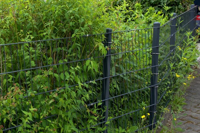 Doppelstabmattenzaun Rembart Holz Im Garten